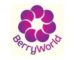 BerryWorld logo